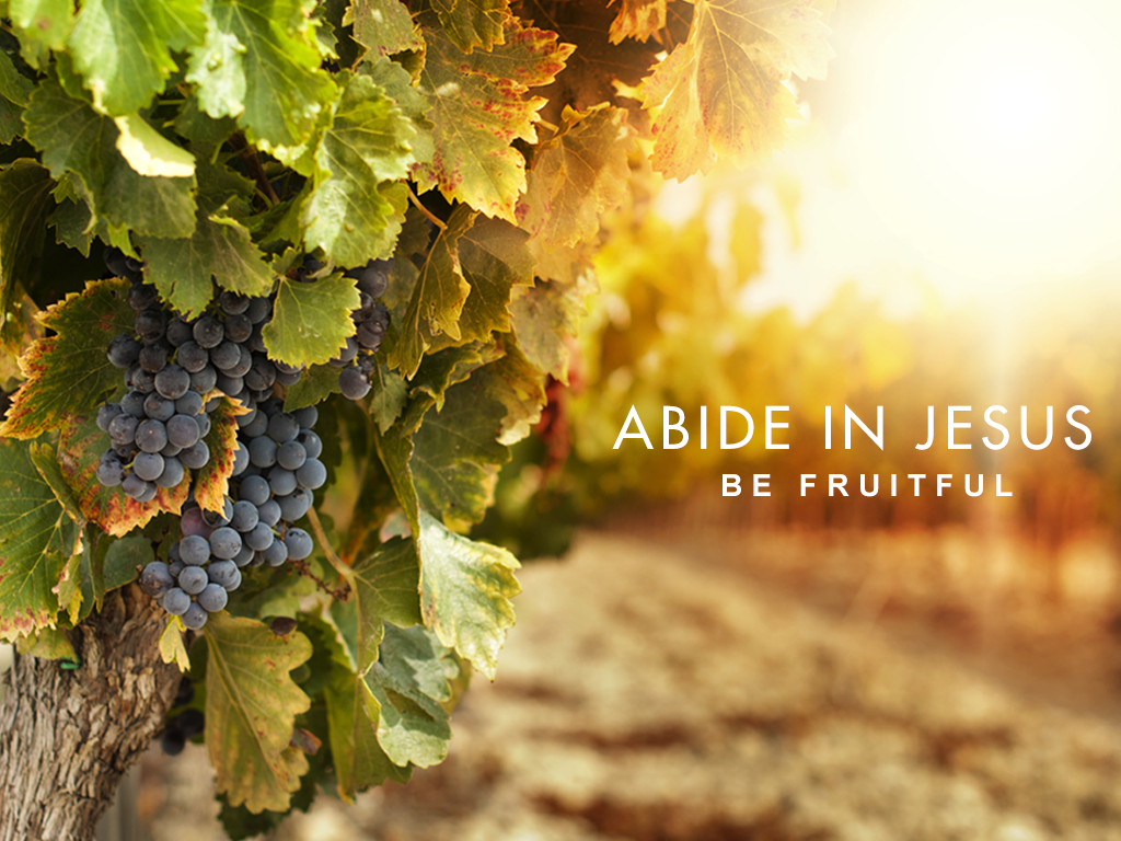 Abide in Jesus and Be Fruitful