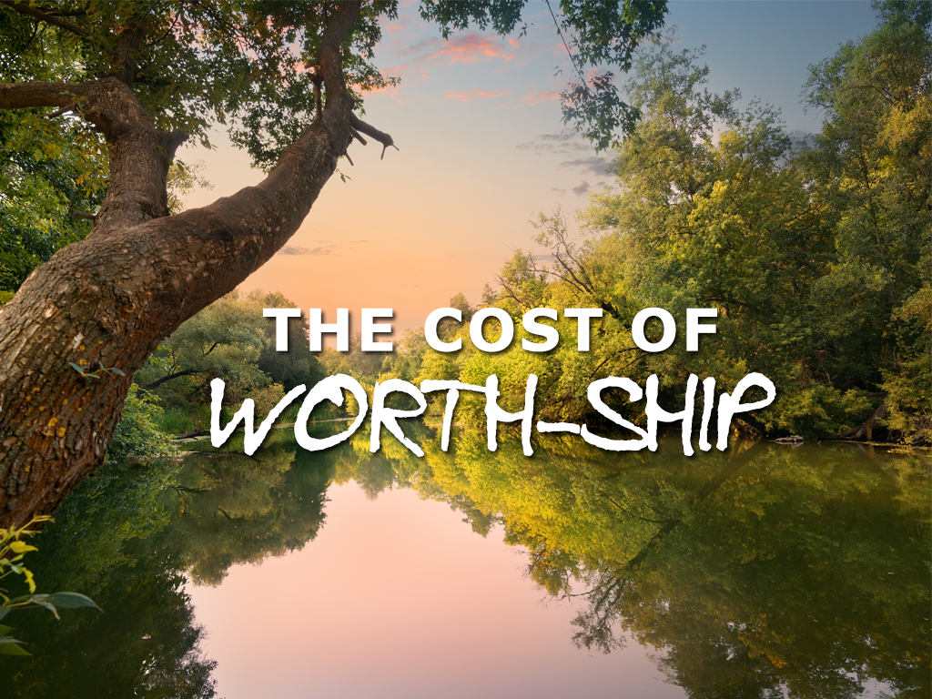 the-cost-of-worth-ship
