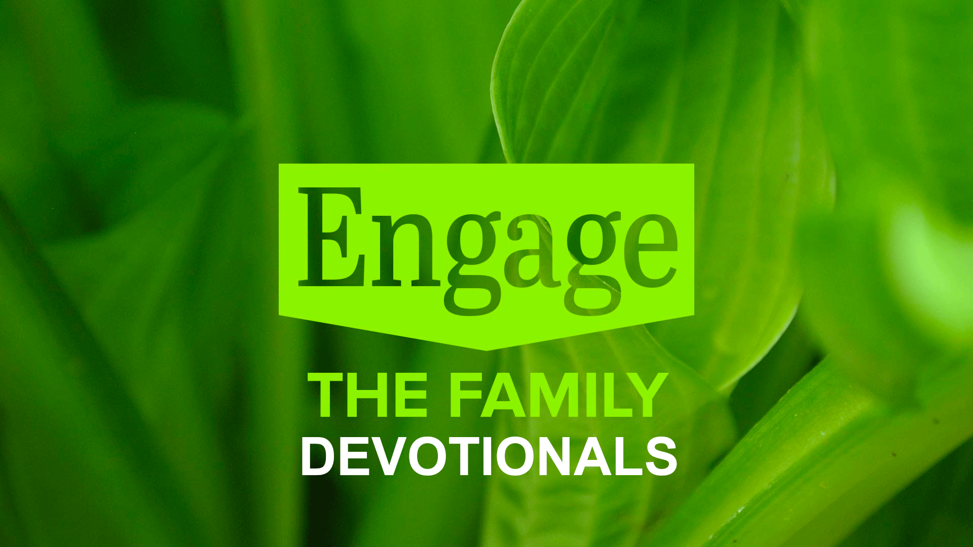 Engage The Family Devotionals