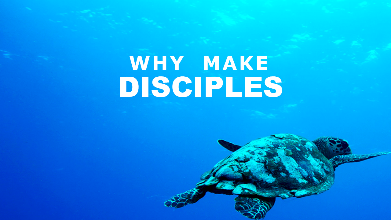 Why Make Disciples