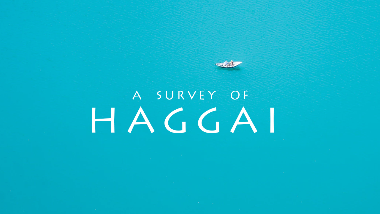 A Survey of Haggai