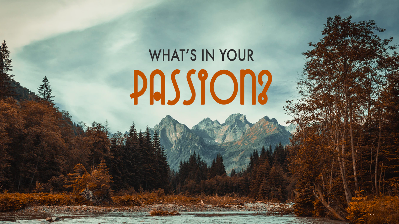 What's in Your Passion?